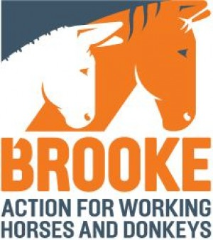The Brooke Hospital for Animals East Africa